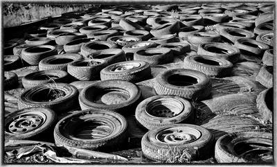 Runde Sache- Öko Kennzeichnung auch für Reifen