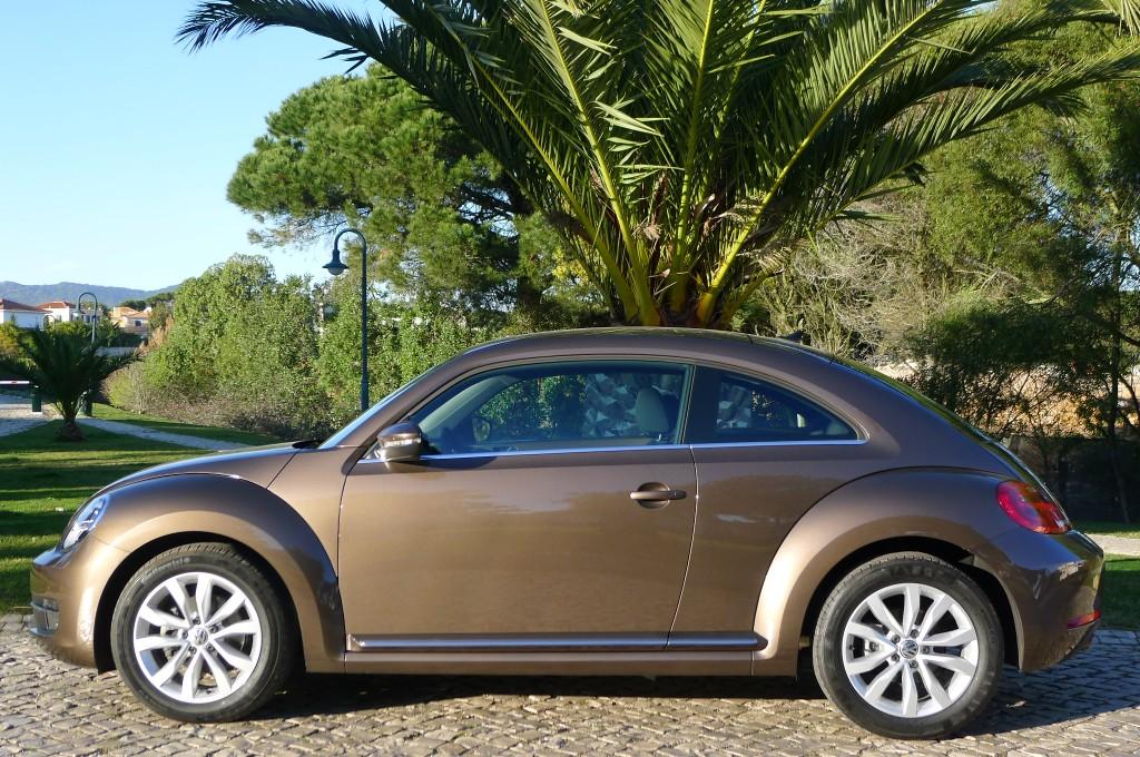 Volkswagen Beetle- Perfekt unter Palmen