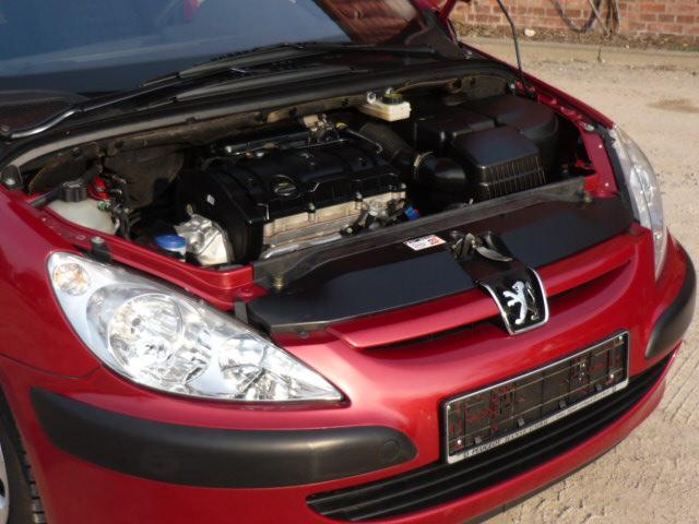 Scheckheft ist Pflicht-Peugeot 307 1,6l 16 V